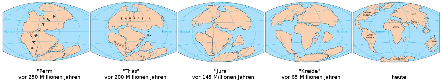 Plattentektonik während der letzten 250 Millionen Jahre. Ursprünge der Tropenwälder liegen auf Pangaea.