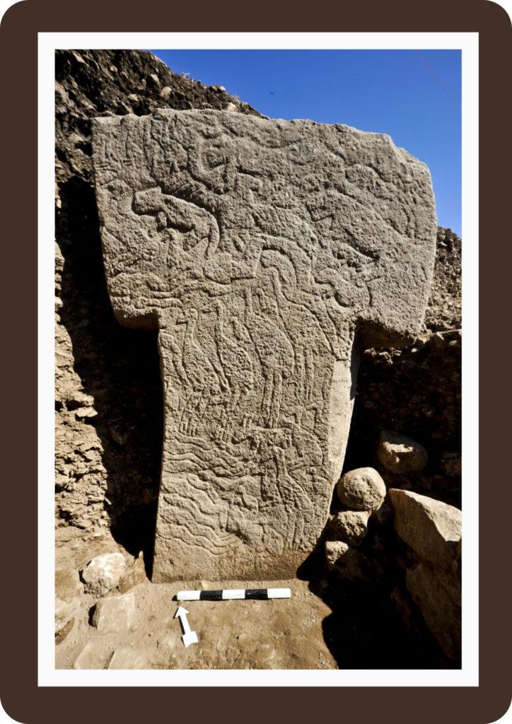 Zwei Meter hohe, T-förmige Säule (Nr. 56) aus Stein von Göbekli Tepe. (Foto: Nico Becker, DAI)