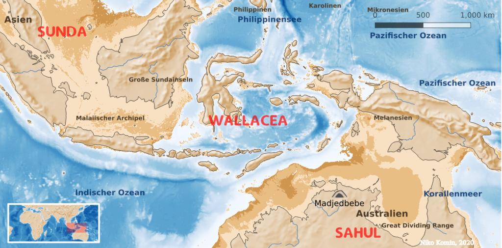 """Karte mit verschiedenen Küstenlinien. Südostasiatischer Festlandssockel """"Sunda"""", australischer Sockel """"Sahul"""" und die Inseln von Wallacea dazwischen."""