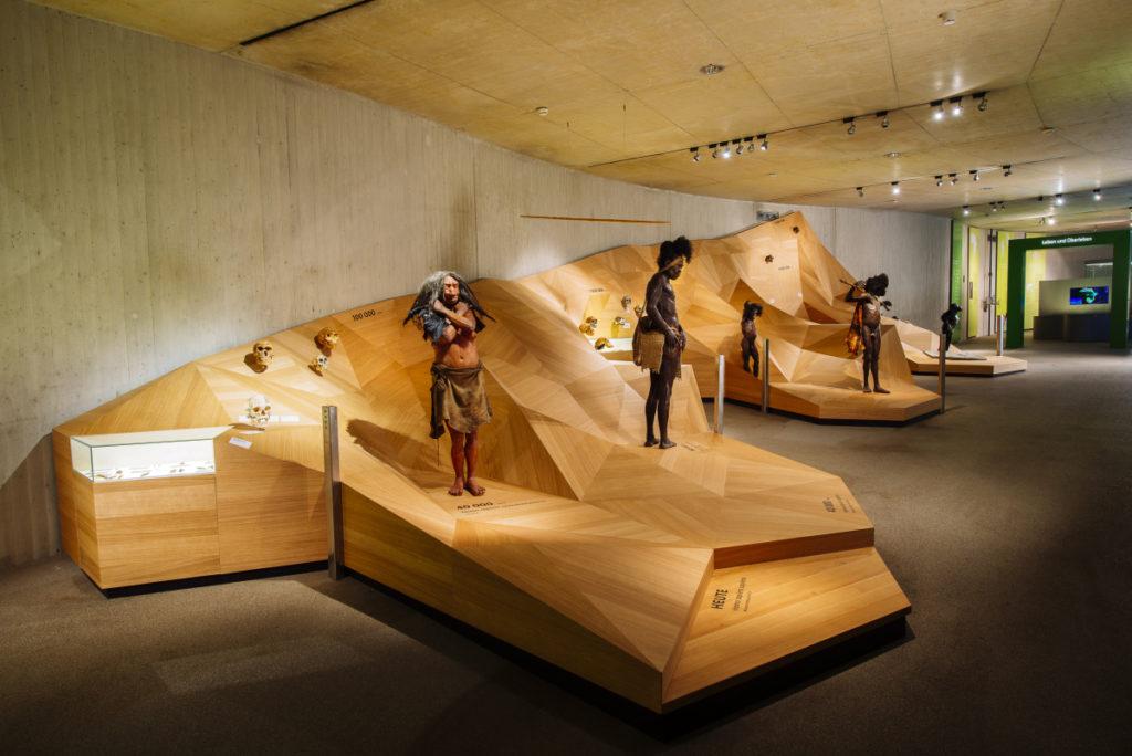 Modelle verschiedener Menschenarten auf einer hölzernen Landschaft. Zu sehen auf dem virtuellen Rundgang im Neanderthal Museum.