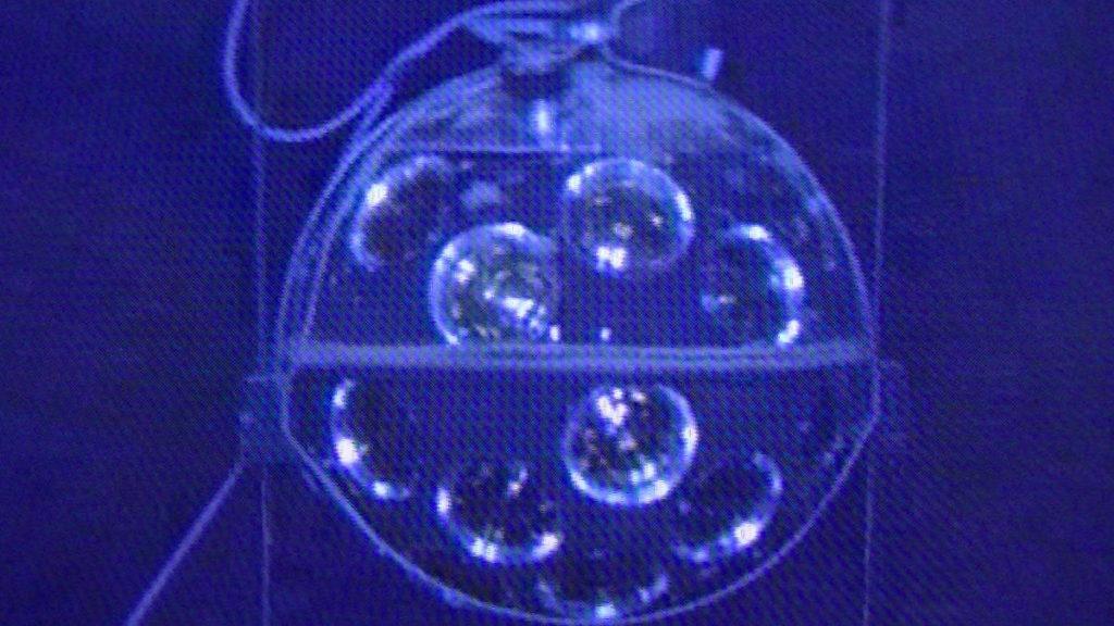 Glaskugel in der Tiefsee mit lichtempfindlicher Elektronik zum Aufspüren von Neutrinos und Biolumineszenz.