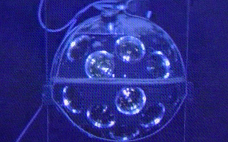 """Lichtempfindliches Element am Detektor für Neutrinos ORCA (Teil von """"KM3NeT"""") in 3500 Metern Tiefe fotografiert."""